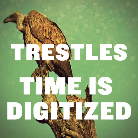 BG012 - Trestles - Time Is Digitized